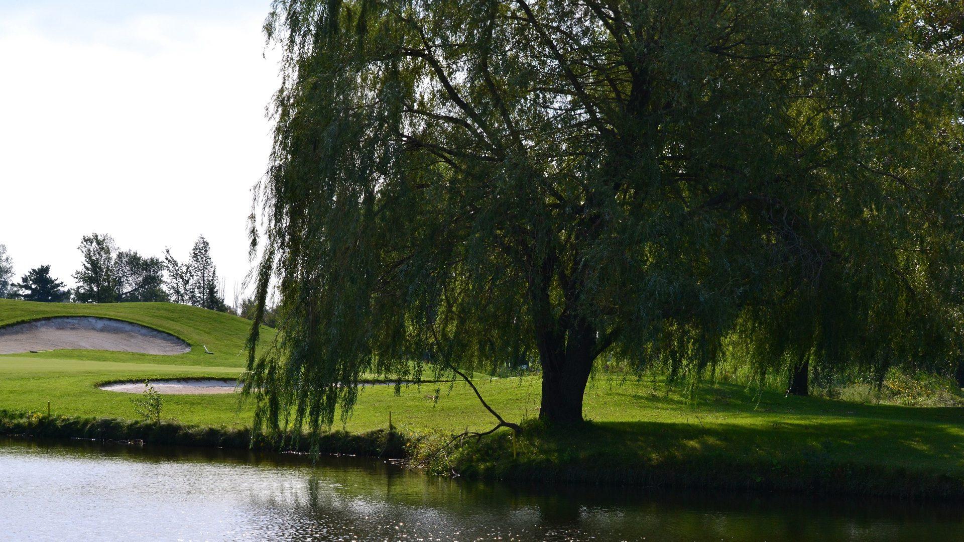 Club de Golf Napierville